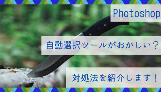 Photoshop|自動選択ツールがおかしい?対処法を紹介します!