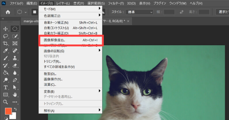 イメージ>画像解像度を選択