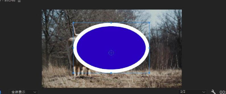 楕円ツール